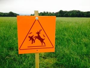 Deer sign1